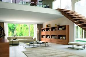 客厅容量大的书柜