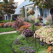 别墅个性花园图