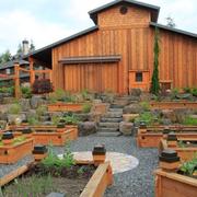 郊外的木屋别墅花园图
