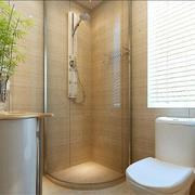 卫生间装饰盆栽