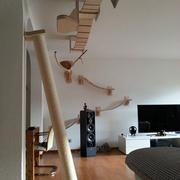 个性简约走廊吊顶图