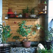 木质墙面的露台