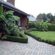 庭院园艺设计图片