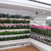 大户型菜园设计图片