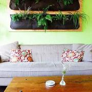 暖色调墙面装修图片