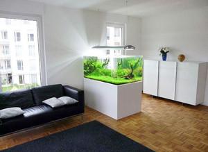 清新型鱼缸装修图片