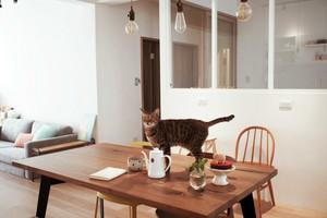 老房变形有惊喜:旧公寓翻新装修效果图