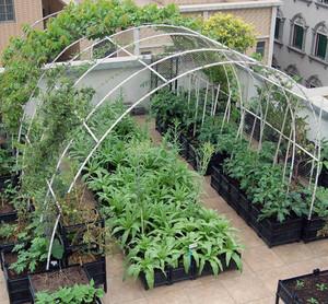 充满着田园气息的阳台菜园装修效果图