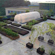 大户型菜园装修设计