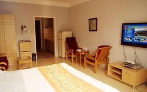 公寓木地板装修设计