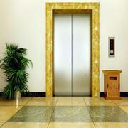 精致电梯门装修设计