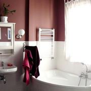 小巧型卫生间瓷砖