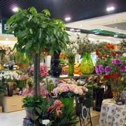 常绿型花店