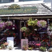 花店鲜花图片