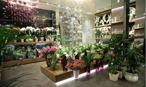 种类繁多 四季鲜花店装修效果图