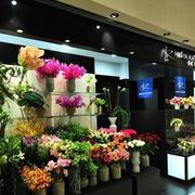 现代创意花店