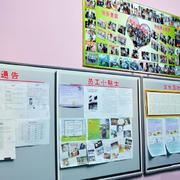 精美型企业文化墙
