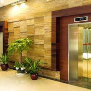 豪华型电梯大全
