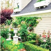 田园风格庭院设计