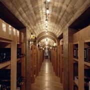 酒窖吊顶设计