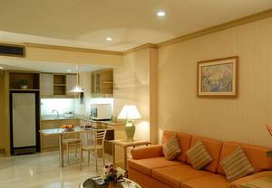 单身公寓简约风格客厅装饰