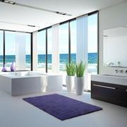 小户型浴室浴缸装饰