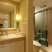 两室一厅卫生间镜饰装饰
