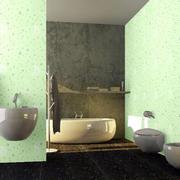 日式卫生间液体壁纸