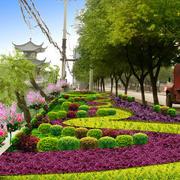 色彩鲜艳花坛装修设计