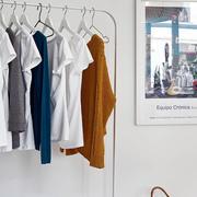 公寓客厅衣架装饰