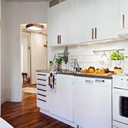 简约风格公寓整体橱柜装饰
