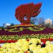 大型广场花坛雕塑设计