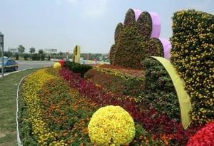 城市中的一片绿 造型各异的花坛装修设计效果图