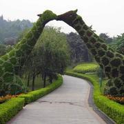 公园动物造型花坛装饰