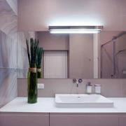 一室一厅卫生间镜饰效果图