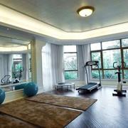 大型私人健身房窗帘设计