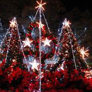 幼儿园圣诞树装饰