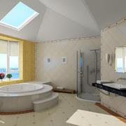 大型卫生间浴室装修