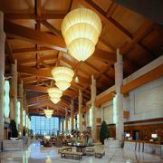 酒店大型创意灯饰设计