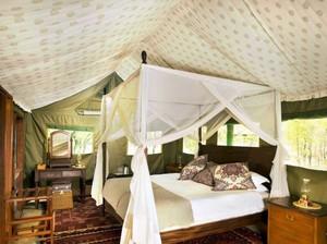 斜顶卧室设计图