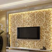 欧式奢华灯饰背景墙图示