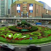 城市花坛装修