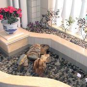 入户花园小水池装修