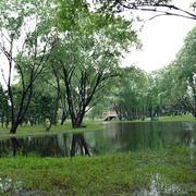 园林小溪绿色装修