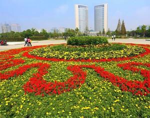精美的都市广场大型花坛设计效果图欣赏图集
