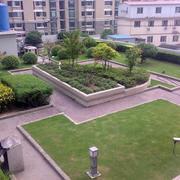 小区花园装修设计