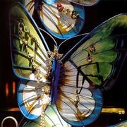 蝴蝶型珠宝橱窗设计