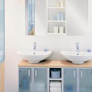 卫生间双洗漱池设计