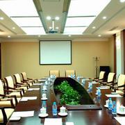 会议室吊顶灯饰设计