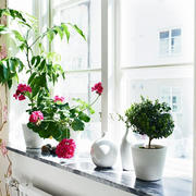 公寓窗台装修设计